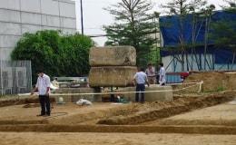 Tầm quan trọng của công tác Phòng chống Mối công trình xây dựng