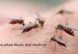 Phun thuốc muỗi Ba Vì – Hotline: 0989.782.883