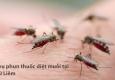 Phun thuốc muỗi Bắc Từ Liêm – Hotline: 0989.782.883