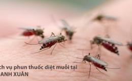 Phun thuốc muỗi Thanh Xuân – Hotline: 0989.782.883